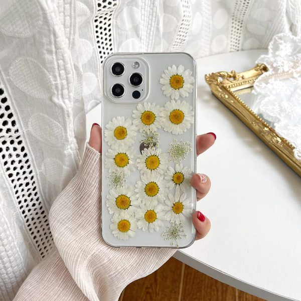 Real Pressed daisy iPhone Case